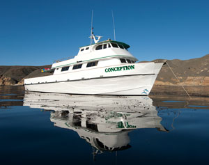 Channel Islands Scuba Diving Trip